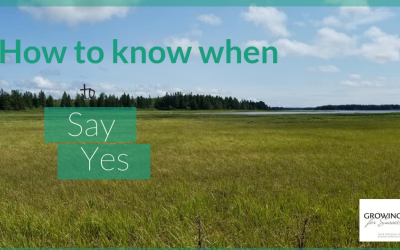When To Say Yes